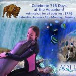 716 Days at the Aquarium of Niagara