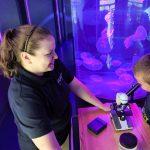 Marine Biologist in Action